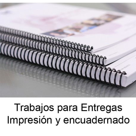 Proyectos Entregables